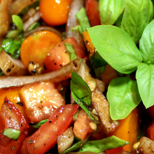 tomato salad with a big sprig of basil. This is a close up photo that shows cut tomatoes, torn basil and onions in a balsamic dressing