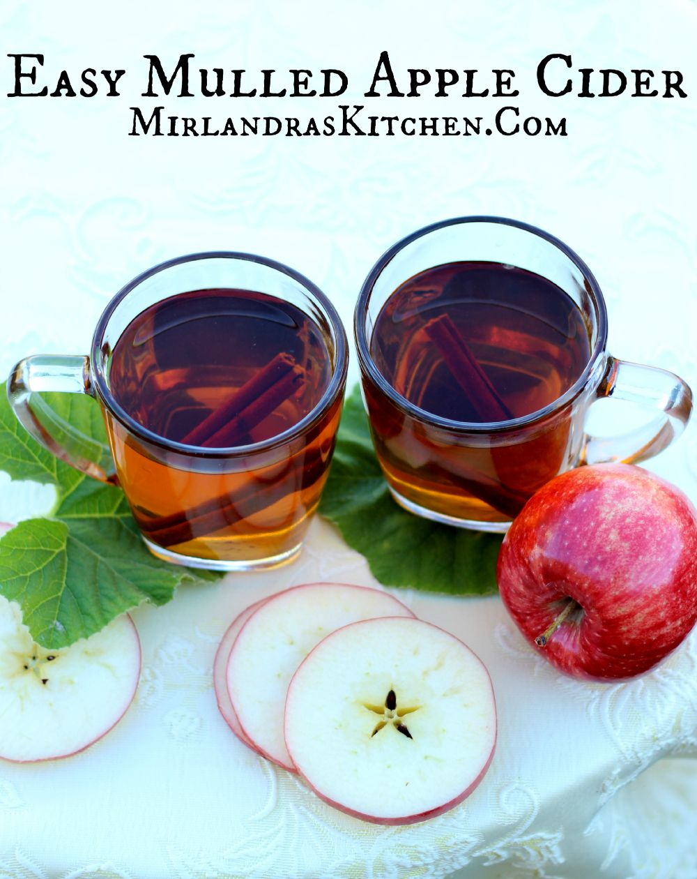 Easy Mulled Apple Cider - Mirlandra's Kitchen