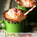 TrufflePeppermintHotChocolateFloat