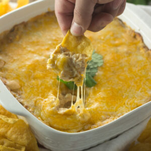 A square white ceramic baking dish is full of cheesy, creamy chicken enchilada dip. A hand holding a chip is in the act of scooping up dip and you can see cheese strings pulling up away from the hot cheese top.