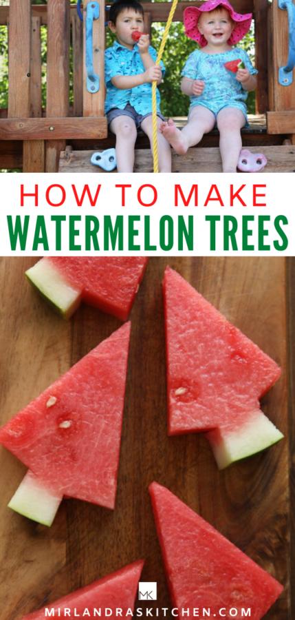 WATERMELON TREES PROMO IMAGE